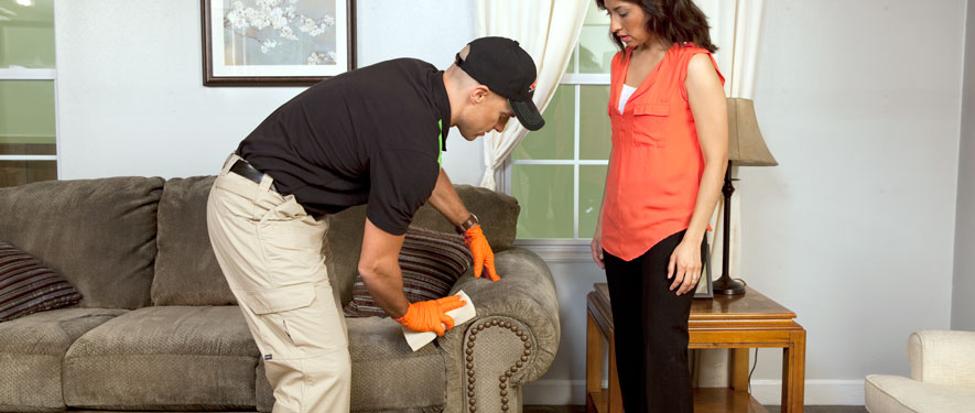 Paoli, PA carpet upholstery cleaning